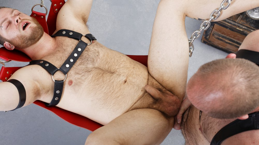 Cub Steven And Phil Mehup – Barebackthathole